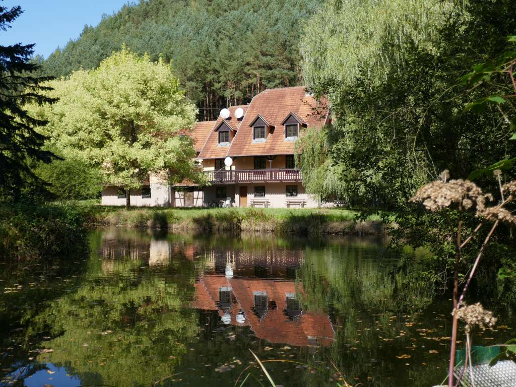 Großzügiges Apartementhaus zum Neuausbau mit großem Grundstück und eigenem See in sehr schöner Waldrandlage