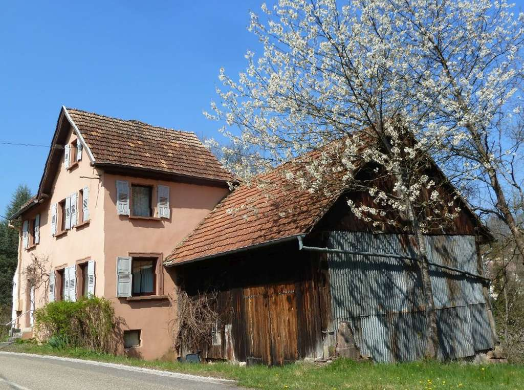 Nettes Wohn-/Ferienhaus mit großem Grundstück, an Bachlauf grenzend