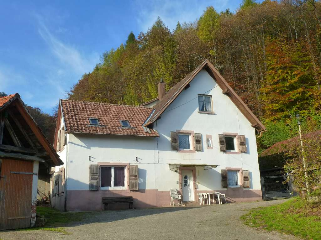 Ehemaliges Bauernhaus zum Renovieren in schöner Waldrandlage